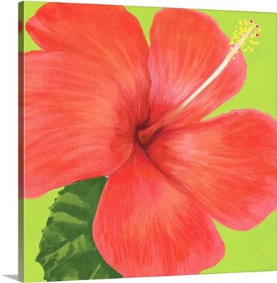 Flower Art IX