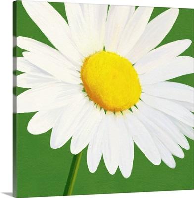 Flower Art VIII