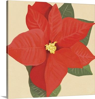 Flower Art XII