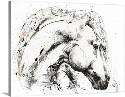 Horse With No Name 2