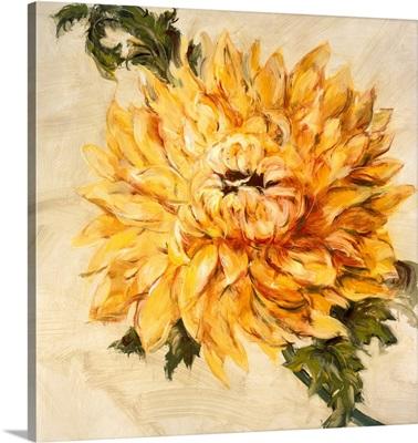 Hot Blooms II