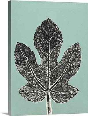 Leaf C2