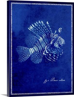 Marine Collection IV - Lionfish