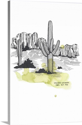 Nation Park Saguaro