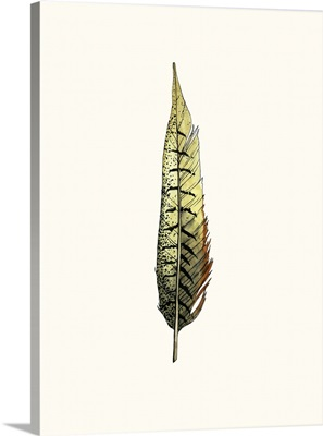 Painted Feather A