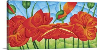 Poppies V