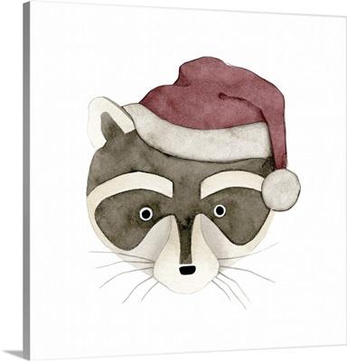 Raccoon Santa