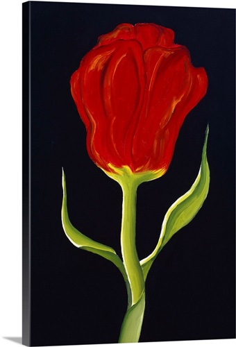 red tulip wall art canvas prints framed prints wall peels great