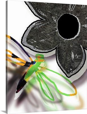 Slapdash Dragonfly