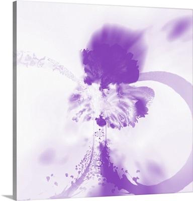 Splash Rings - Violet