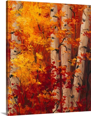 The Magnificent Season of Autumn C