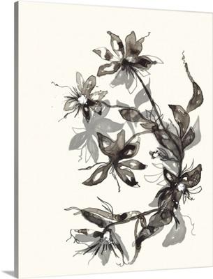 Transparent Flora 2