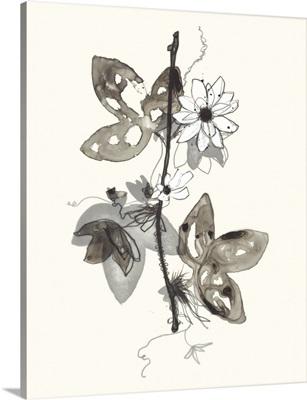 Transparent Flora 3