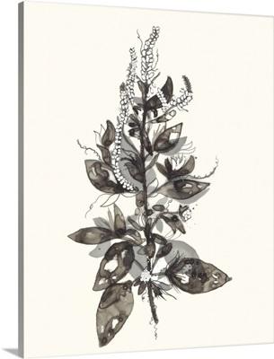 Transparent Floral 4
