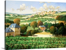 Vineyards of Provence