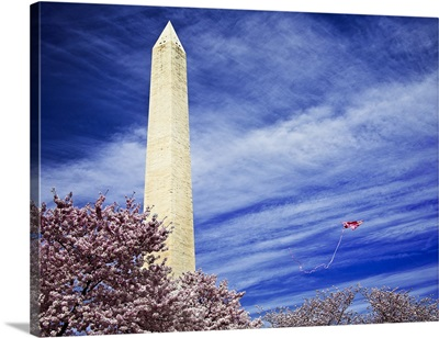 Washington Monument with Kite and Cherry Blossoms