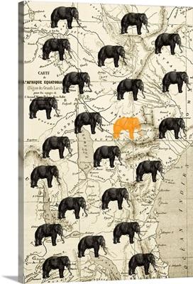 Where the Elephant Roam