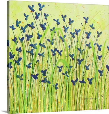 Wildflower Love