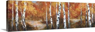 Autumn Birch II