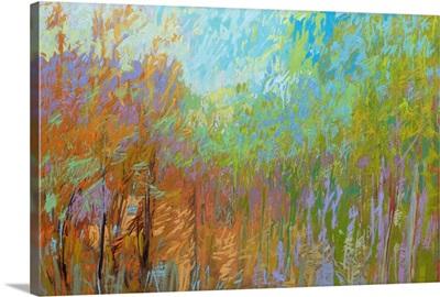 Color Field 55