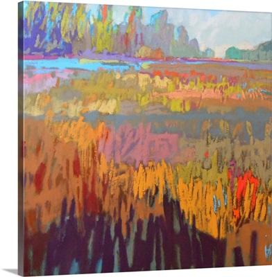 Colorfield XXII