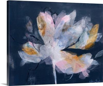 Magnolia Gloaming No. 2