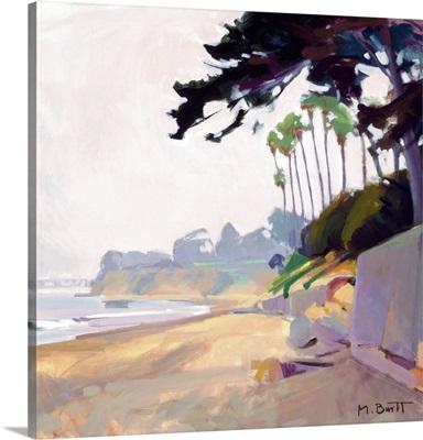 Palm & Cypress; Butterfly Beach