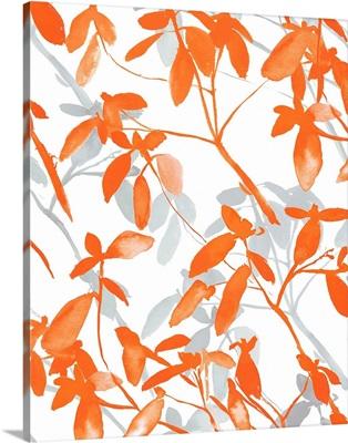 Premonition Orange