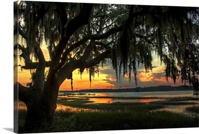 Savannah Evening