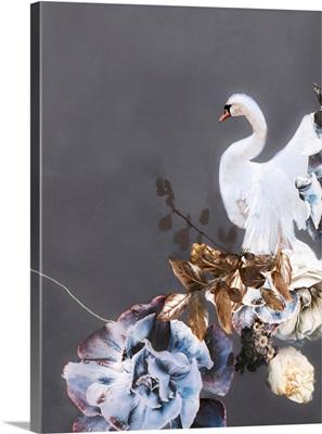 Swan Gold 2