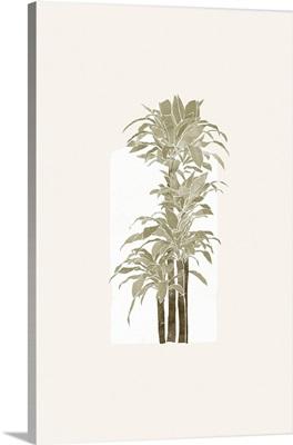 Tropical Window 05