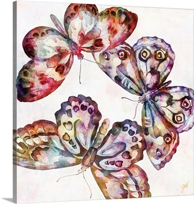 Flutterfly Trio