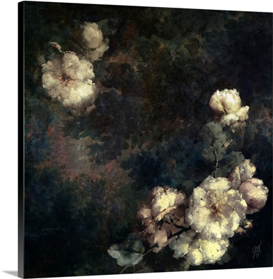 Forest Rose I