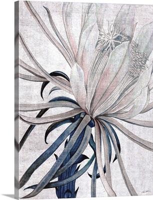 Desert Blossom Blush 2