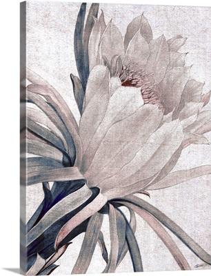 Desert Blossom Blush 3