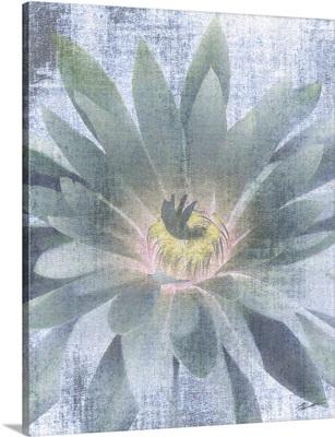 Serenity Bloom 3