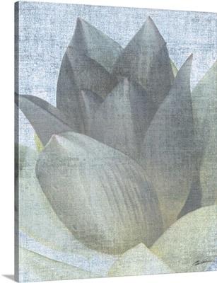 Serenity Bloom 4