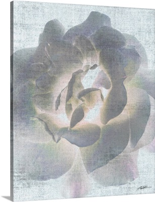 Serenity Bloom 5