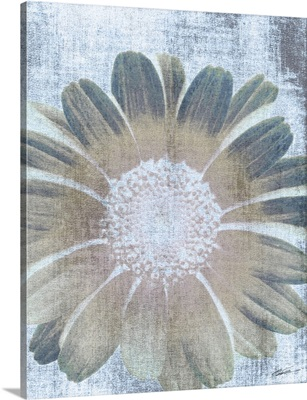 Serenity Bloom 6