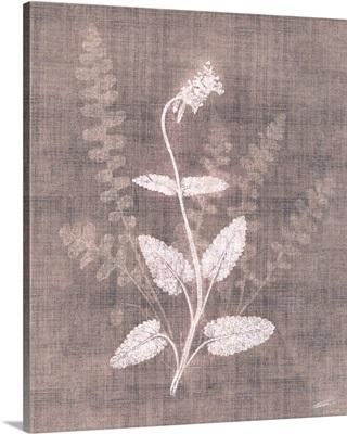Wildflower Blush 2