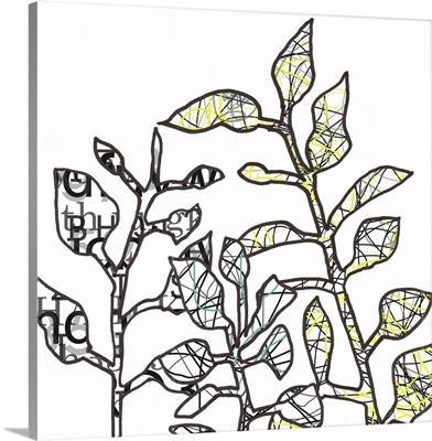 Graphic Botanical