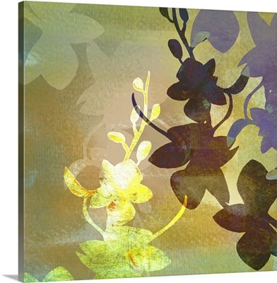 Orchid Abstraction
