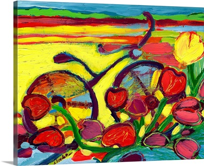 Bicycle Ride Through the Tulip Field #2