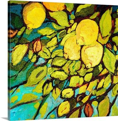 Lemon Tree Fun