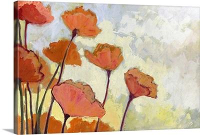 Poppies in Cream