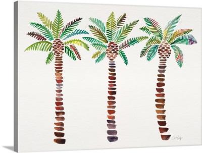 Green Mediterranean Palm Tree