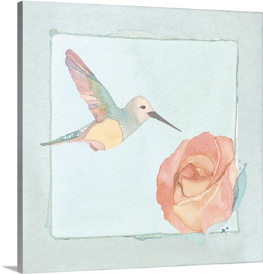 Hummingbird and rose - pale aqua