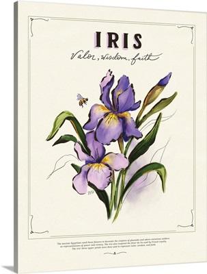 Language Of Flowers - Iris