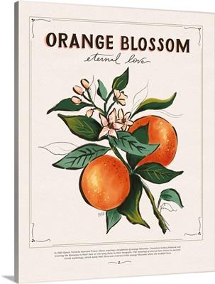 Language Of Flowers - Orange Blossom