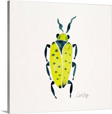 Lime Turquoise Beetle Collection Beetle 7